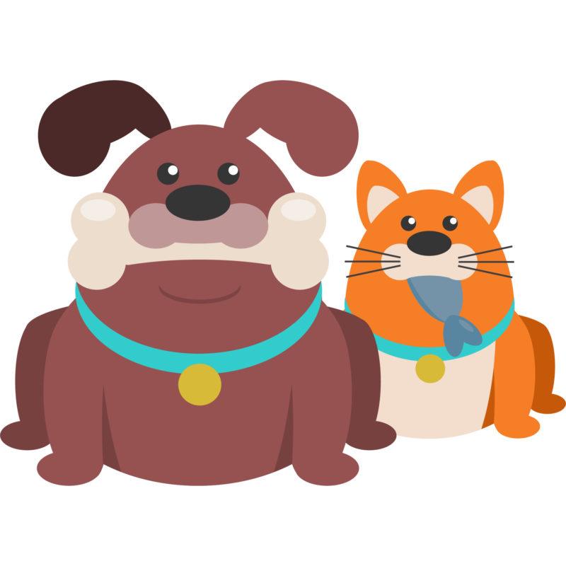 Anna Wördehoff - Ernährungsberatung für Hunde und Katzen