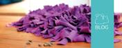 Schnüffelteppich XL Blog Header mit fertigem Schnüffelteppich
